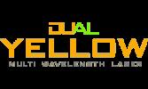 dual-yellow